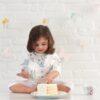 BABY EMPIRE - ADEN ANAIS - 1 PACK - SILKY SOFT BURPY BIB - KAIN MULTIFUNGI - CELEMEK - ALAS TIDUR - MEADOWLARK