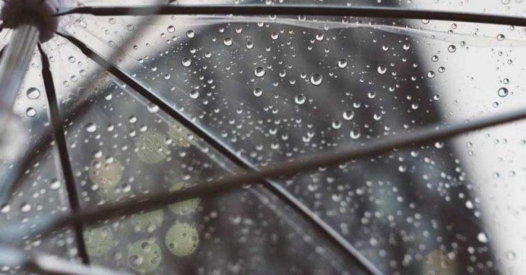 cara_jitu_lindungi_si_kecil_dari_demam_berdarah_di_musim_hujan-guesehatcom_1577443090